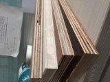 madera contrachapada de la base de Combi del pegamento de la cara E2 del papel de la melamina de 21m m