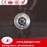 10 Roller-Fahrrad-Motor des Zoll-250W elektrischer