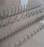 Il prezzo del punto della parete di obbligazione Anti-Arrampica il chiodo pungente sulla parte superiore che recinta i punti del rasoio