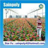 Invernadero agrícola grande de la película del Multi-Palmo para la flor
