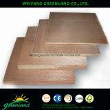 Alta calidad, madera contrachapada de la película del pino de la base del álamo