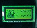 Lcd-Bildschirmanzeige Stn Transflective einfarbiges PFEILER 16X2 Zeichen