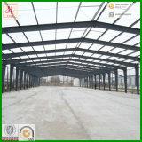Estructural del almacén de acero con el estándar del SGS (EHSS282)