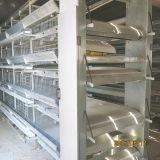 Longfeng гальванизировало полноавтоматическую клетку слоя с сертификатом SGS ISO