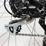DC Bafang 모터 최신 판매 전기 뚱뚱한 눈 자전거 바닷가 Ebike Pdelec 발동기 달린 자전거 (JB-TDE00Z)