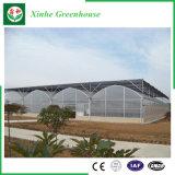 Hot-DIP galvanisiertes grünes Plastikhaus für Gemüse/Blumen