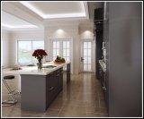 Moderner Küche-Entwurfs-hölzerner Schüttel-Apparattür-Küche-Schrank
