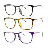 Optische Frame van uitstekende kwaliteit van het Oogglas Ultem het Plastic Eyewear met Slank Roestvrij staal 7310