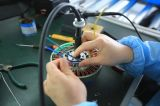 Motor van de Hub Ebike van de cassette 48V 500watt de Achter