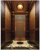 작은 싼 가정 엘리베이터 또는 상승 엘리베이터/엘리베이터 상승 전송자