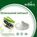 90% d'extrait de policosanol Extrait de canne à sucre en poudre d'octacosanol