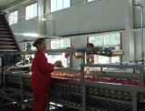 Usine de fabrication complète de concentré de jus de grenade à échelle réduite