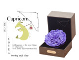 Ivenran preservó la flor fresca del rectángulo de regalo del Capricornio