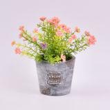Flores artificiales salvaje en papel maché Pot para la decoración de interior