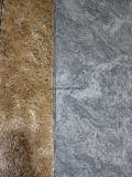 Первая отборная полная плитка фарфора мрамора тела