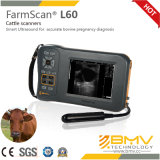 Scanner portatile di ultrasuono di Farmscan L60 Palmtop Digital