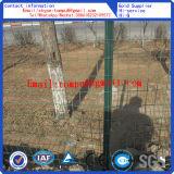 유럽 담 또는 농장 Fence/PVC 담
