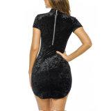 Die reizvollen Form-Frauen nehmen rückseitiges Reißverschluss-Samt-Kurzschluss-Hülsen-Kleid ab