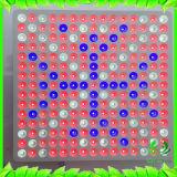 45W СИД растут освещение светлой панели красное голубое для крытого сеянца заводов Flowering