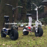 新しいデザインFoldable電気スクーター1600W