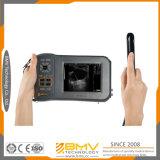 , 둔감한, Farmscan L60 2016 최고 판매 초음파 양 말, B 최빈값 초음파 스캐너