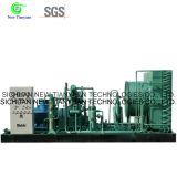 Biogas-Fahrzeug-Typ Zylinder Fillng Kompressor für Biogas-Brennstoffaufnahme-Station