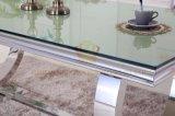 Mesa de centro moderna do metal Sj890 com parte superior de vidro
