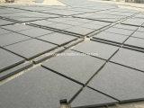 Natürliche Granit-Fliese für Projekt-Wand-Umhüllung