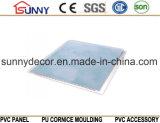 大理石の平らなラミネーション天井の中国の製造者のための新しいデザインPVCパネル
