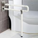 Mains courantes se pliantes fixées au mur de barres d'encavateur de salle de bains vieilles