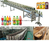 Equipamento completo da bebida para a bebida da função do suco da bebida da energia do chá