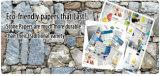 (SPN35-100um) papel sintético de papel de pedra sem ácido nenhum revestido