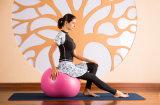 Ropa de deportes corriente modificada para requisitos particulares de la yoga del entrenamiento de las polainas de la gimnasia de la aptitud apretada del Tracksuit