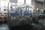 De Automatische Roterende Minerale het Vullen van het Water van de Fles Zuivere Machine van uitstekende kwaliteit