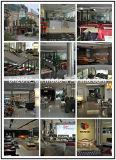 Sofà moderno del cuoio genuino della mobilia del sofà (SBO-3920)
