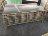 Modern Rattan ao ar livre / Wicker Sofa Leisure Garden Furniture (TG-6009)