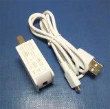 보편적인 Portable는 저희 영국 EU 5V1a 마이크로 유형 C USB 벽 충전기를 폐쇄한다