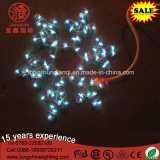 Lumière de corde de motif d'étoile pendante blanche chaude de flocon de neige de DEL 2D pour la décoration de fête de Noël