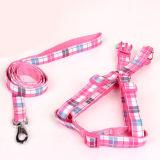 Harness colorido del perrito del gato del perro de la fuente de producto del animal doméstico (H007)