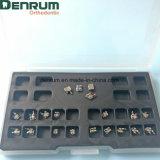 Parentesi graffe ortodontiche di alta qualità del fornitore di Denrum