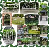 معدنة حديد حديقة قوس مع مقعد