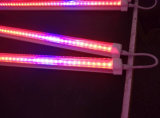 シンセンLEDはHydroponic T8 LEDの管がライトを育てる軽いメーカー価格の赤い青カラーを育てる