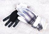Gant de ski d'enfants de gant de doigt du gant cinq de ski de gosses/gant hiver d'enfants/gant de détox/gant d'Okotex/gant ski de mitaine/gant hiver de mitaine