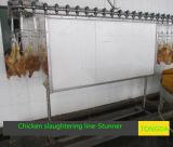 Máquina de Slauhgering del pollo