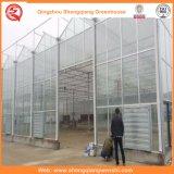 日よけシステムが付いている花またはフルーツまたは野菜栽培のパソコンシートの温室