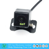 자동 Camera 700tvl Clear Vehicle Small Size