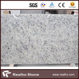 Polished White Rose Granite with Competitive Price