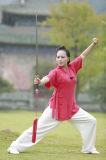 Vêtement oblique à haute teneur de collier du ressort des femmes de Kongfu de Chi de Tai et du lin textile d'été