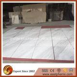 Mattonelle di marmo della Grecia Volakas del rifornimento per il controsoffitto e la parete/mattonelle di pavimentazione
