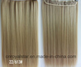 Jungfrau Remy Straight Extension Hair und Klipps in Hair Extension